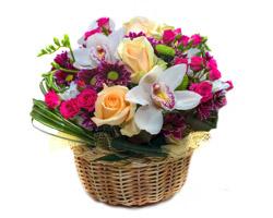 Sconto 5€ Mazzo Orchidee con Italian Flora
