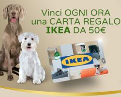 Ultima: vinci carta regalo Ikea da 50€