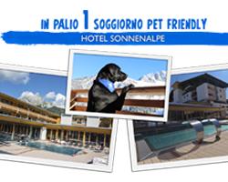 Vinci gratis soggiorno Pet Friendly