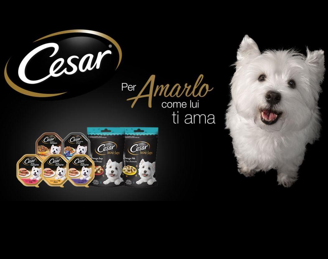 Diventa tester Cibo per Cani Cesar e ricevi 15 buoni sconto!