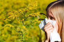 non serve spendere per avere rimedi naturali per allergia